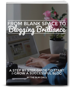 Blogging-Brilliance-Book-VeePeeJay-e1429031830349
